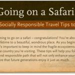 11 Safari Tips Infographic