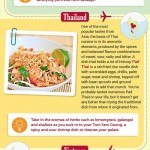 Tastes of Mainland SE Asia Infographic