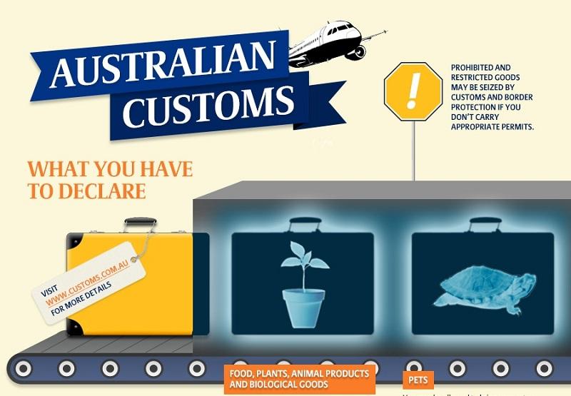 Customs Australia Infographic Featured