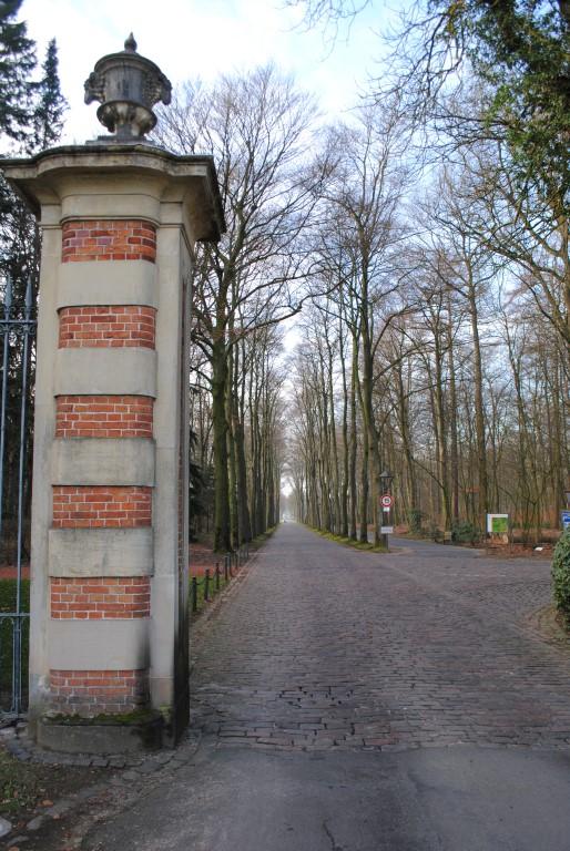 Woods Around Schloss Nordkirchen
