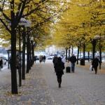 Stockholm Random